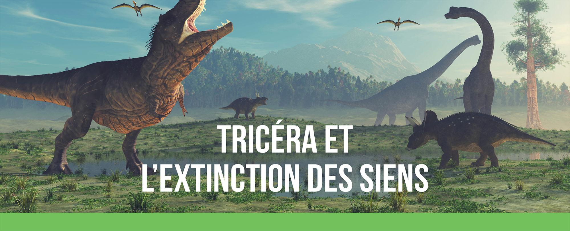 Tricéra et l'extinction des siens